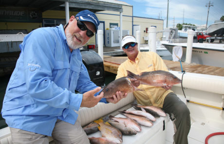 Charter guest holding Mangrove snappers.